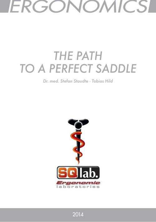 SQlab_Path to a Perfect Saddle