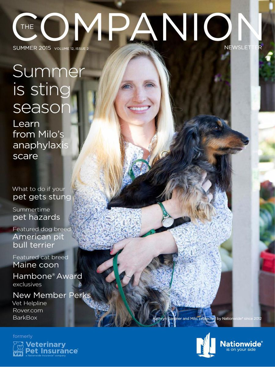 The Companion newsletter—from Nationwide® Insurance